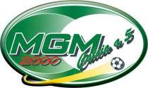 Stampa serigrafica per MGM 2000